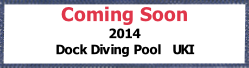 Coming Soon 2014 Dock Diving Pool   UKI